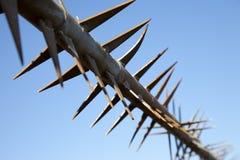 Cerca con las barras de acero sostenidas Foto de archivo
