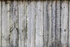 Cerca da madeira Imagem de Stock Royalty Free