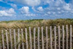 Cerca da madeira lançada à costa em torno da vegetação da praia Imagens de Stock