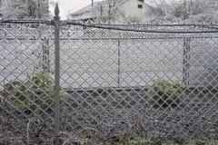 Cerca da rede de arame do gelo Imagens de Stock
