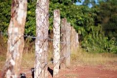 Cerca de alambre de la lengüeta Imagen de archivo