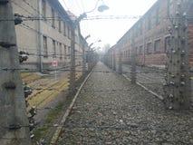 Cerca de alambre eléctrica de Auschwitz I Imagen de archivo libre de regalías