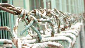 Cerca de alambre verde envejecida Imagen de archivo