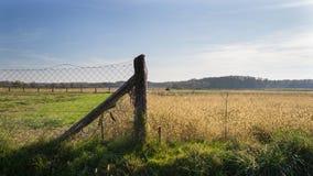 Cerca de alambre vieja del campo en el campo con el cielo azul Imagen de archivo libre de regalías