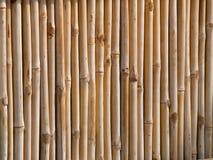 Cerca de bambú Imagen de archivo
