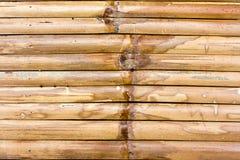 Cerca de bambú Fotos de archivo libres de regalías
