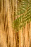Cerca de bambú Fotografía de archivo
