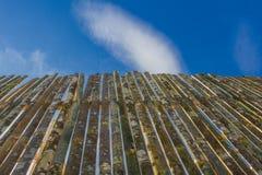 Cerca de bambú Row Imagen de archivo libre de regalías