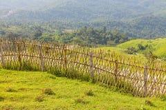 Cerca de bambú vieja Fotografía de archivo libre de regalías