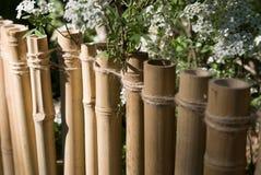 Cerca de bambu Fotos de Stock Royalty Free