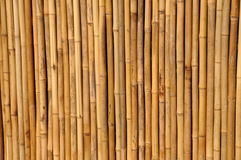 Cerca de bambu Fotos de Stock Royalty Free