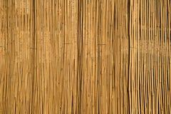 Cerca de bambu Imagem de Stock Royalty Free