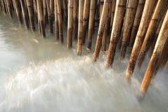 Cerca de bambu Fotografia de Stock