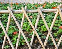 Cerca de bambu imagens de stock royalty free