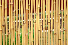 Cerca de bambu amarela Imagens de Stock