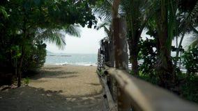 Cerca de bambu do polo em uma ilha tropical Sandy Beach branco com costa palma-alinhada video estoque