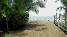 Cerca de bambu do polo em uma ilha tropical Sandy Beach branco com costa palma-alinhada vídeos de arquivo