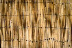 Cerca de bambu natural imagem de stock