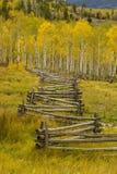Cerca de carril partido de la caída de Colorado Imagen de archivo libre de regalías