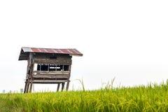 Cerca de chozas de madera viejas en los campos del arroz fotos de archivo