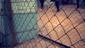 Cerca de fio Close up da rede de aço Barreira da proteção de segurança no shopping filme