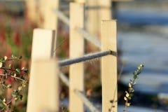 Cerca de la cuerda en el jardín Foto de archivo libre de regalías