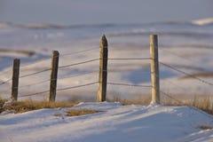 Cerca de la pradera en invierno foto de archivo libre de regalías