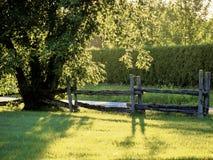 A cerca de madeira Foto de Stock