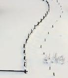 A cerca de madeira contrasta na neve branca fria do prado fresco Imagens de Stock Royalty Free
