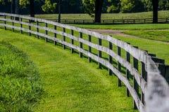 Cerca de madeira curvada Fotos de Stock