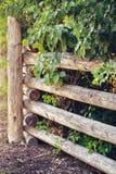 A cerca de madeira da vila do país feita de grandes logs grandes, árvores planta arbustos atrás dela, fundo textured Fotografia de Stock