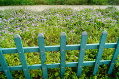 Cerca de madeira do jardim Foto de Stock