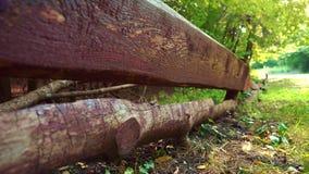 Cerca de madeira longitudinal em uma floresta verde, estrada em uma floresta coberta com a grama verde, parque do verão video estoque