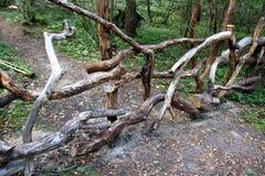 Cerca de madeira natural imagem de stock royalty free