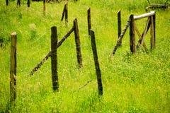 Cerca de madeira, oxidada em um verde, grama do campo Imagens de Stock Royalty Free