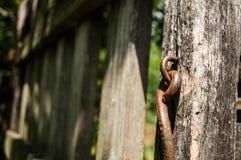 Cerca de madeira velha Imagem de Stock