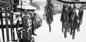 Cerca de madeira velha bonita no fundo da neve no inverno imagens de stock