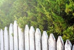 Cerca de madeira velha branca sob a luz solar da tarde Fotografia de Stock Royalty Free