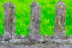 Cerca de madeira velha coberta com o moss-3 Foto de Stock Royalty Free