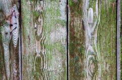 Cerca de madeira verde como um fundo natural Fotos de Stock