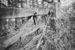 Cerca de madera blanco y negro imagen de archivo libre de regalías
