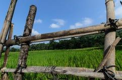 Cerca de madera con el fondo de la hierba Foto de archivo