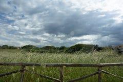 Cerca de madera en un campo de hierba Imagenes de archivo