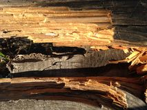 Cerca de madera quebrada que proporciona una visión imágenes de archivo libres de regalías