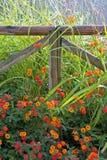 Cerca de madera rodeada por las flores coloridas imagen de archivo libre de regalías