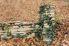 Cerca de piedra vieja Fotografía de archivo libre de regalías