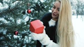 Cerca de pino verde la mujer con el pelo rubio largo mira la caja roja almacen de metraje de vídeo