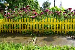 Cerca de piquete amarela com flores bonitas em uma jarda fotografia de stock royalty free