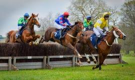 Cerca de salto de la carrera de caballos - Peper Harow imagenes de archivo