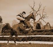 Cerca de salto de la carrera de caballos - Peper Harow Fotos de archivo